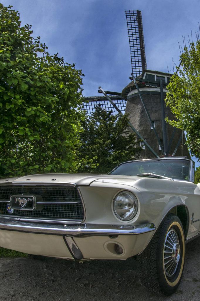 Mustang 50 jaar JPEG kopie